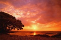 Sunset Wallpaper 1628