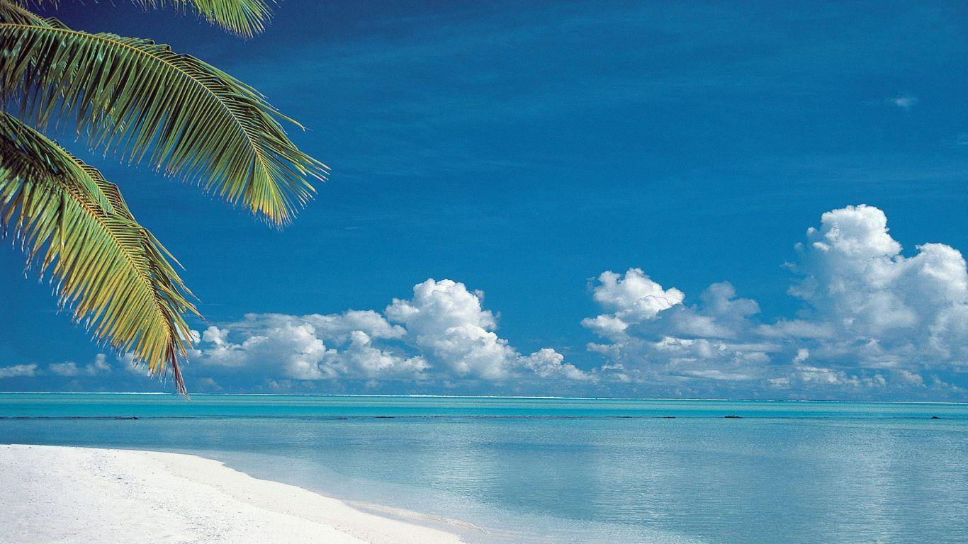 paradise beach wallpaper 905
