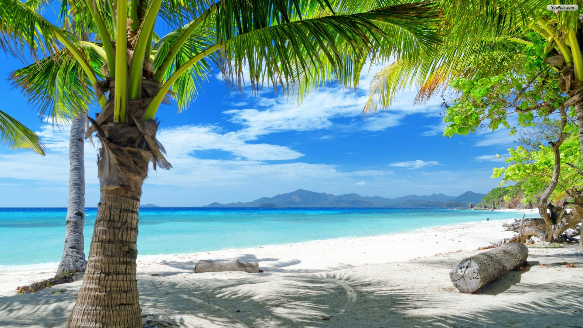 paradise beach wallpaper 909