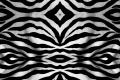 Zebra Wallpaper 2500