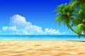 Beach Wallpaper 1165
