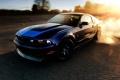 Mustang Wallpaper 1239