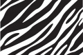 Zebra Print Wallpaper 2735