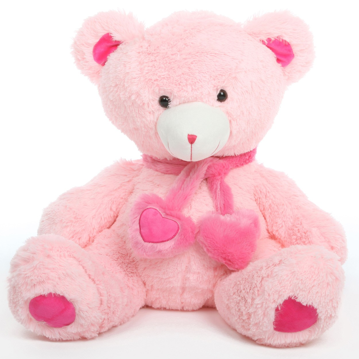 cute teddy bear 1420