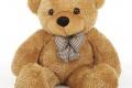 Cute Teddy Bear 1410