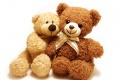 Cute Teddy Bear 1413