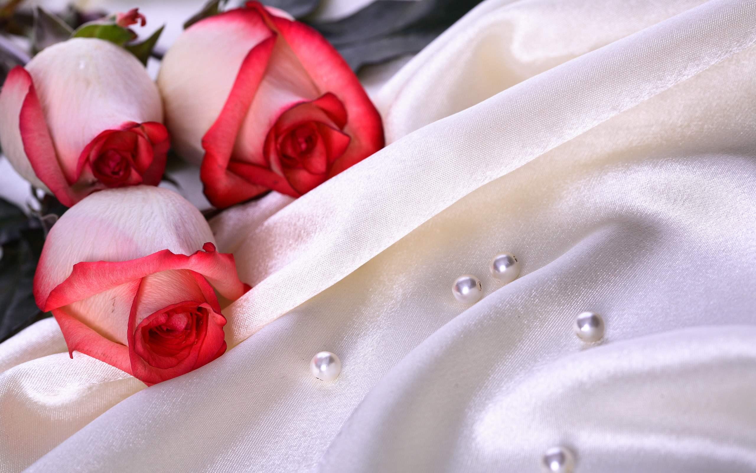 Wedding Wallpaper 3882 2560x1600 px HDWallSourcecom