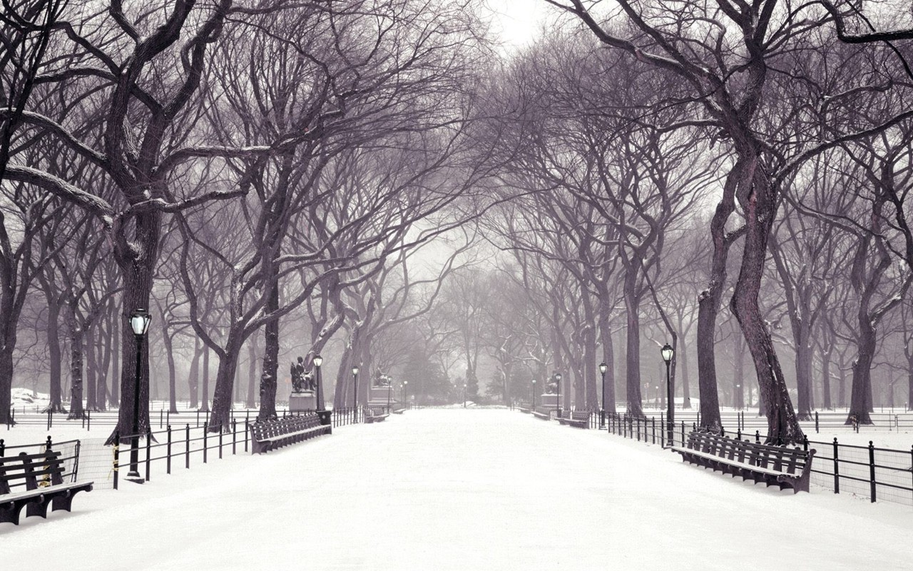 calm winter backgrounds 18558
