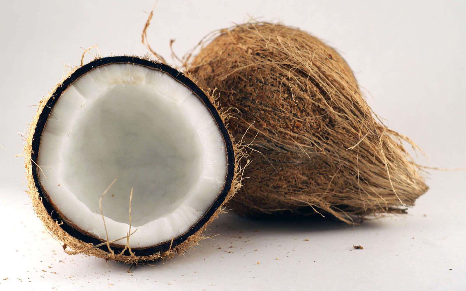 coconut wallpaper 41263