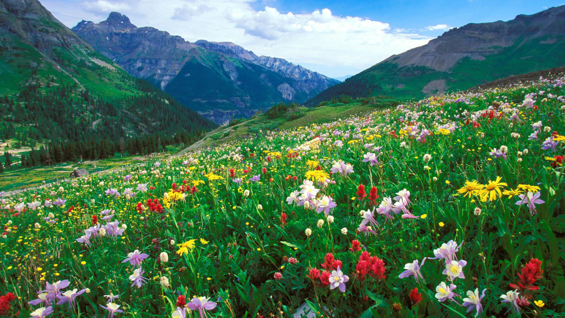 colorado landscape desktop wallpaper 15853
