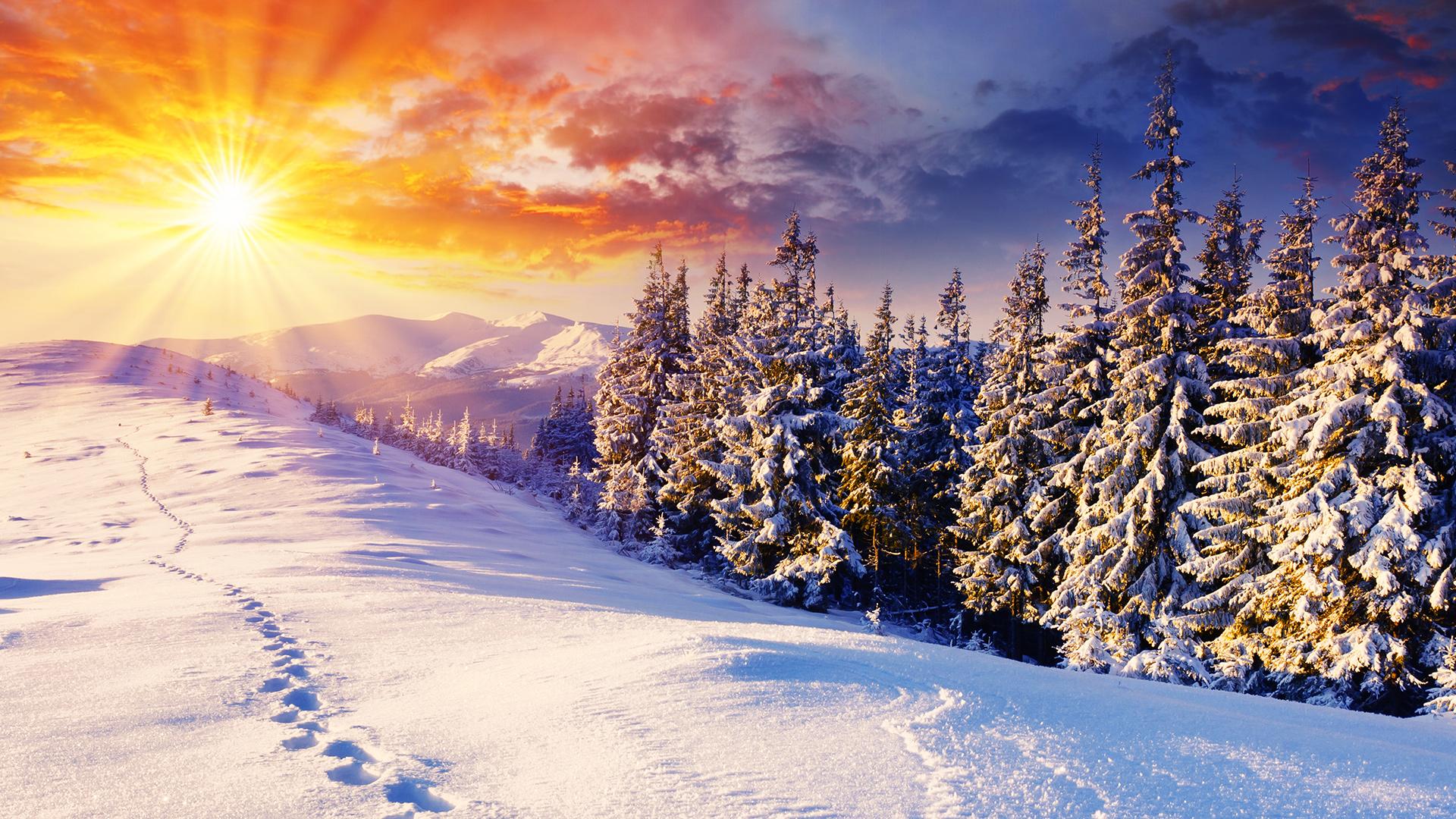 stunning winter background 18556