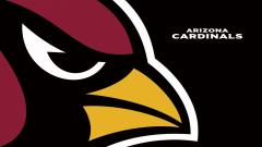 Arizona Cardinals Wallpaper 14496