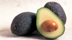 Avocado Wallpaper 42168