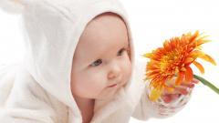 Baby Wallpaper 20743