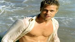 Brad Pitt 8733