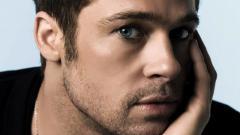 Brad Pitt 8739