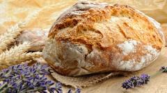 Bread 37333