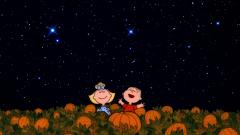 Charlie Brown Wallpaper 14840
