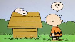 Charlie Brown Wallpaper 14841