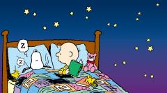 Charlie Brown Wallpaper 14843