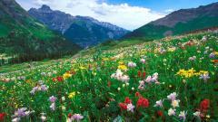 Colorado Landscape Desktop Wallpaper 15853