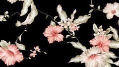 Flower Wallpaper Tumblr 17822