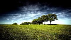 Landscape Wallpaper HD 8251