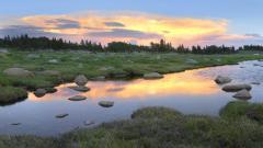 Montana 15866