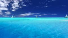 Ocean Pictures 30347