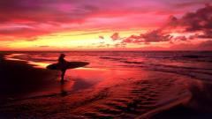 Surfing Wallpaper 5500