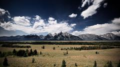 The Rockies 36592