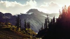 The Rockies 36594
