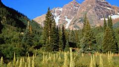The Rockies Wallpaper 36583