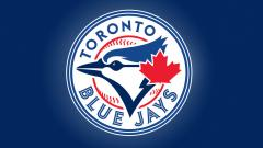 Toronto Blue Jays Wallpaper 15165