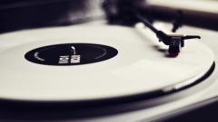 Vinyl Wallpaper 6974