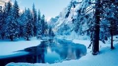 Winter Background 18551