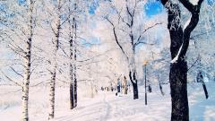 Winter Backgrounds 18544