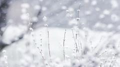 Winter Backgrounds 18546
