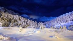 Winter Backgrounds 18563