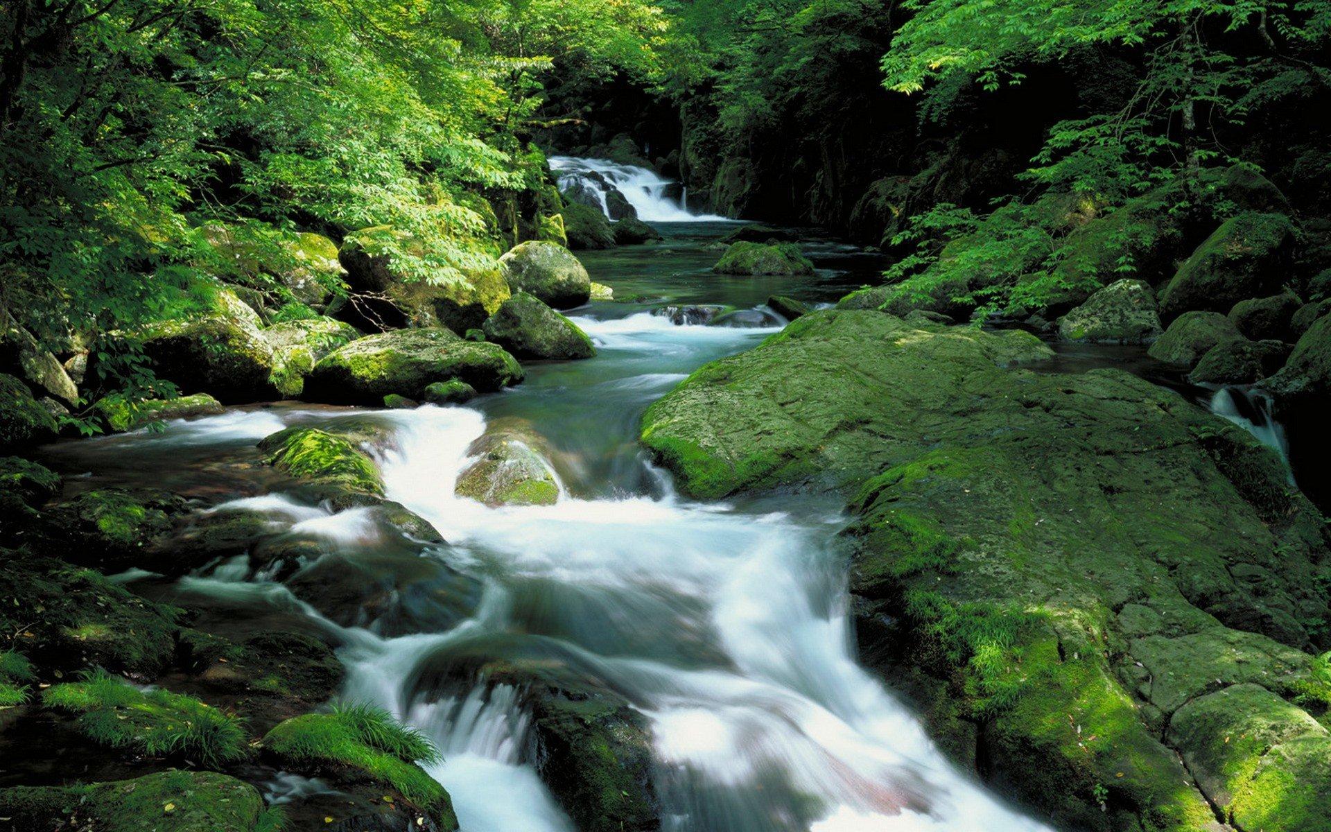 beautiful rapids wallpaper 43938