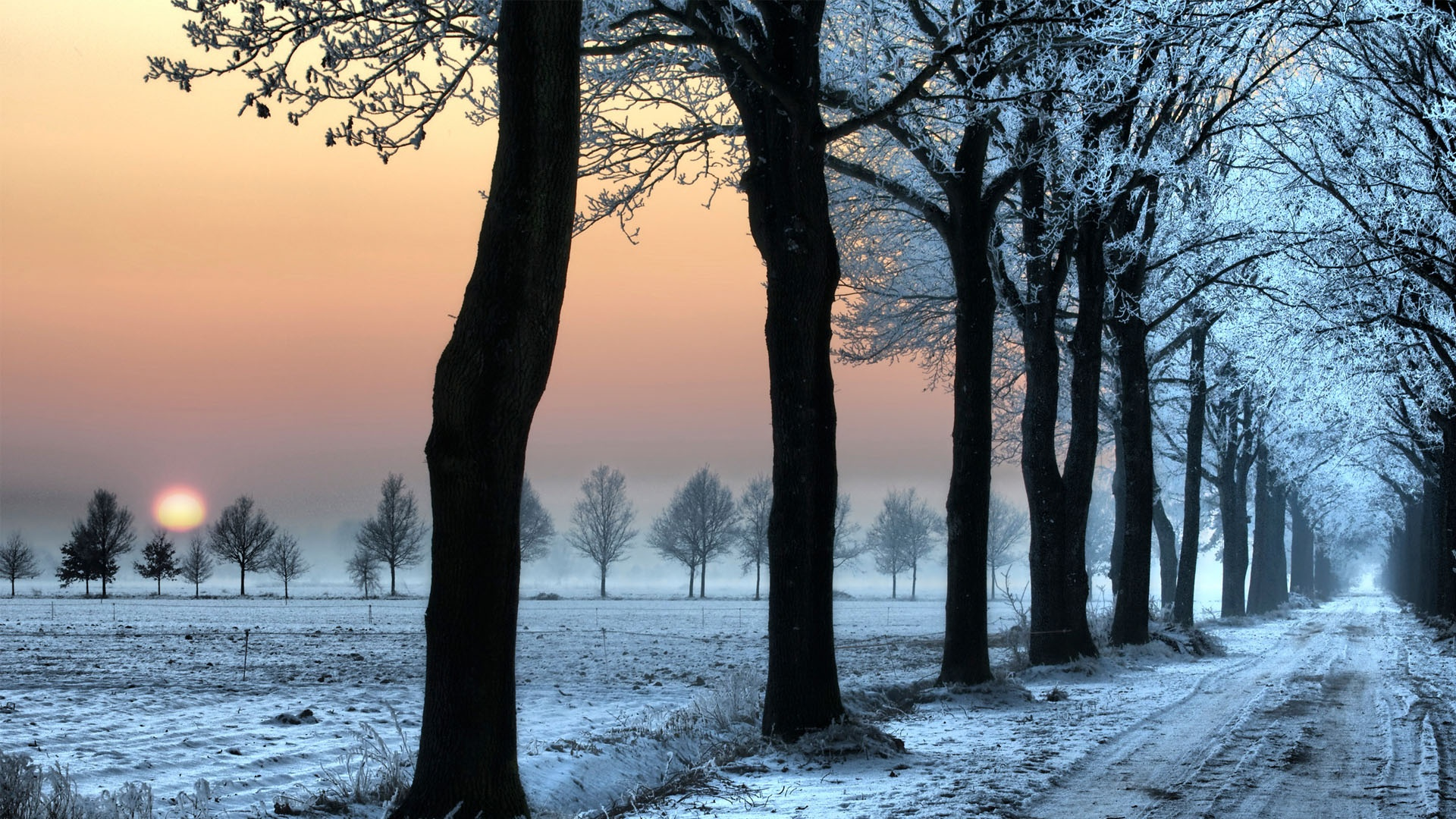 cold road wallpaper 35179