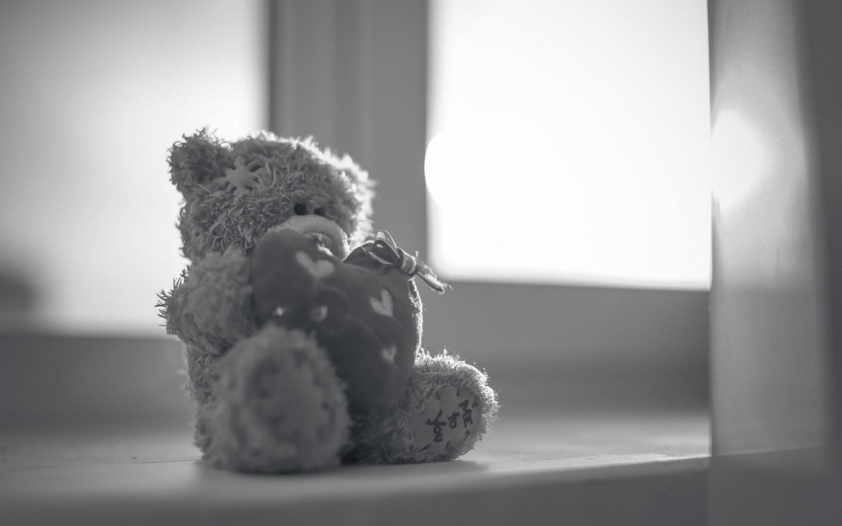 cute toy bear wallpaper 44440