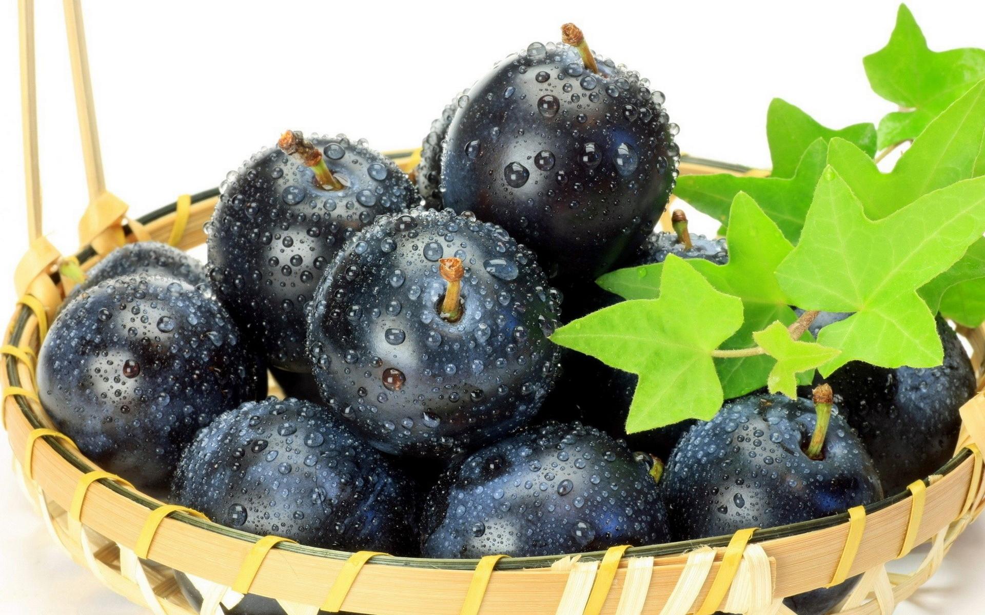 free plum fruit wallpaper 43643