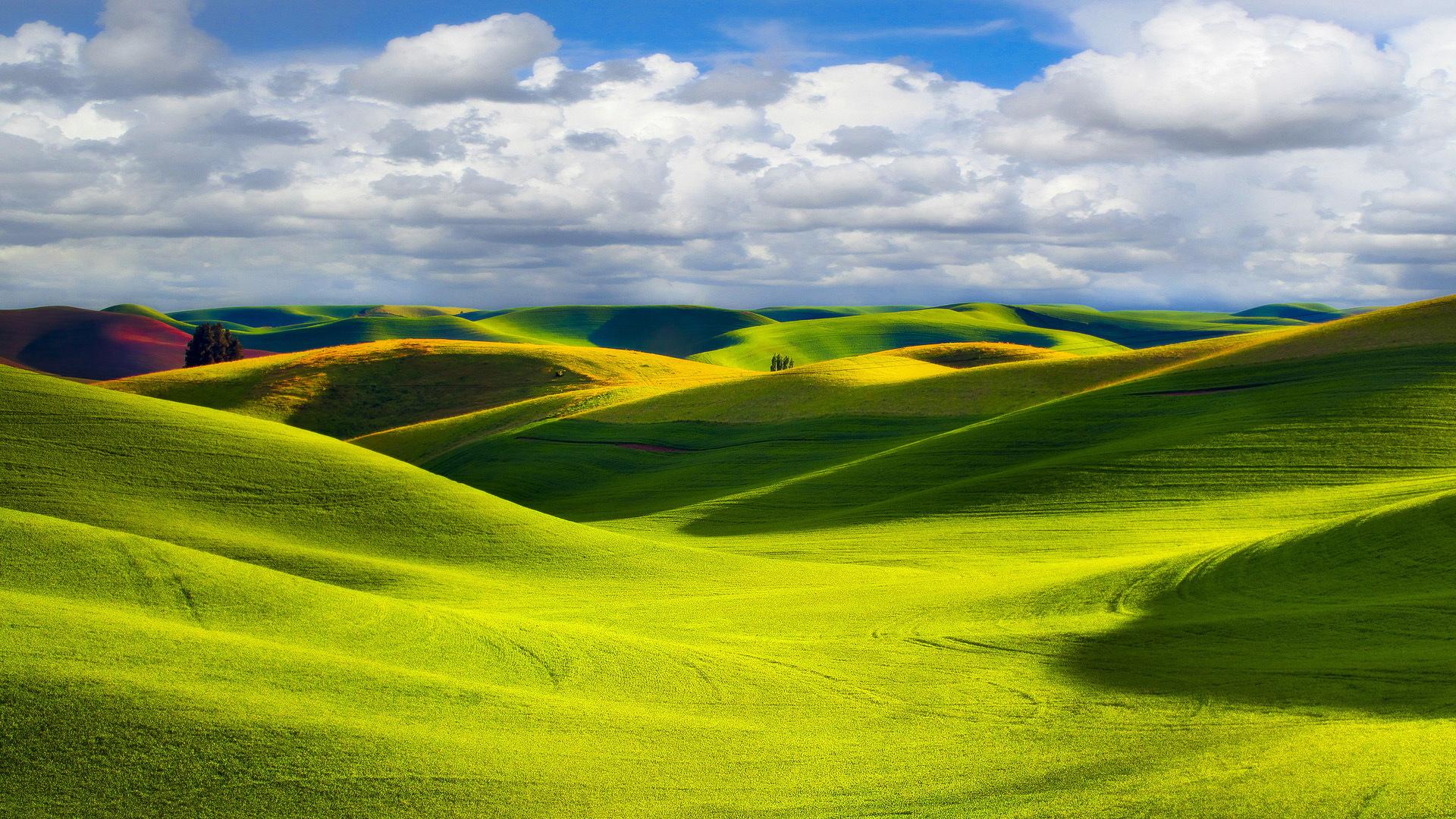 green prairie 33011