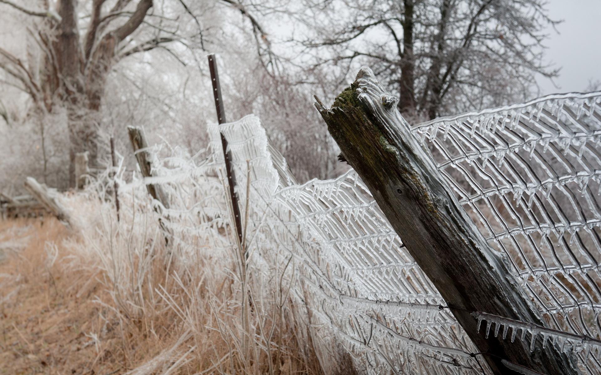 nature fence frozen wallpaper 44968
