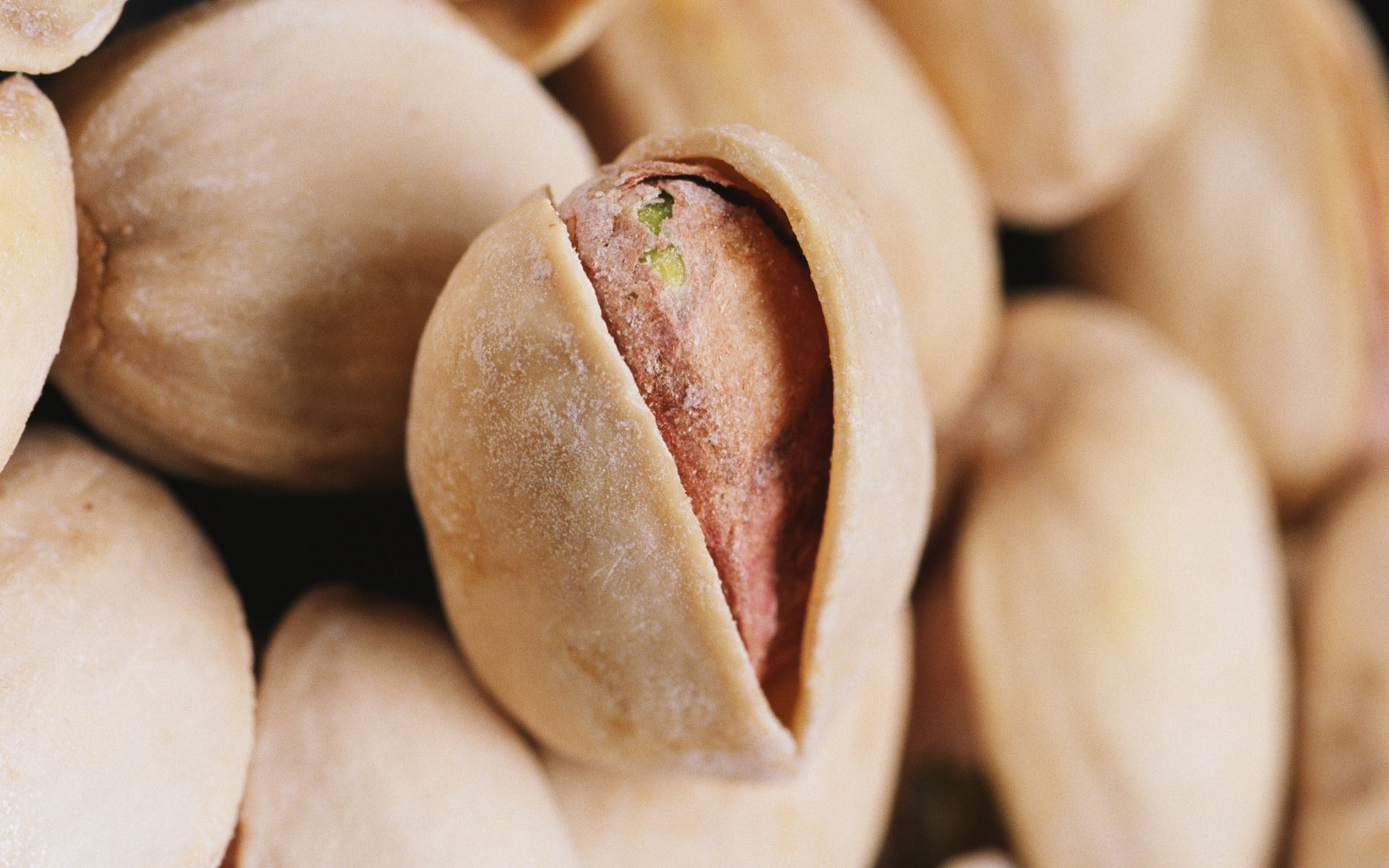 pistachio nuts close up wallpaper 44297
