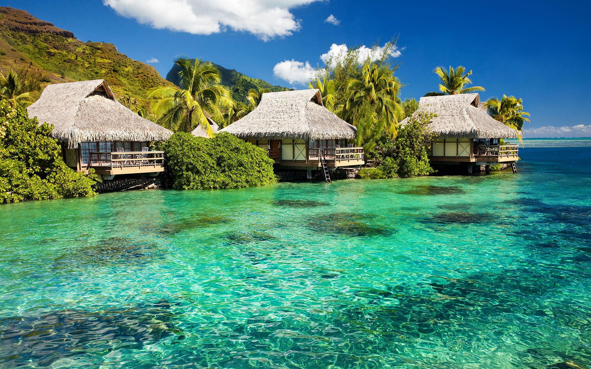 Aruba Beach Bungalow The Best Beaches In World