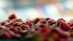 Awesome Berries Wallpaper 44410