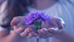 Awesome Flower Hands Mood Wallpaper 43962