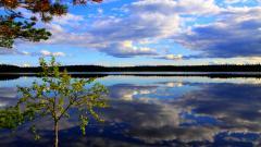 Beautiful Lake 37217